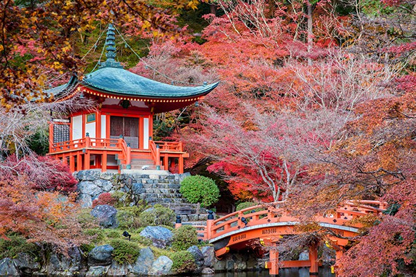 A secluded pagoda in a colorful forest